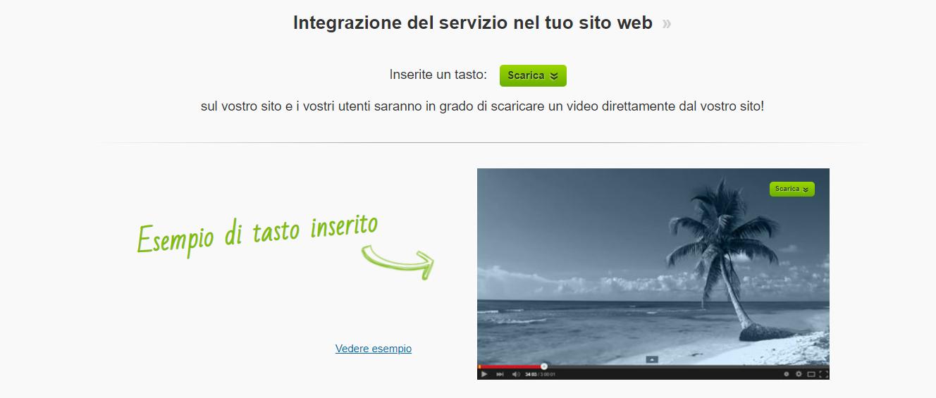 SaveFrom per webmaster