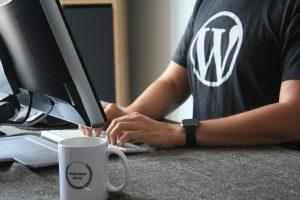 Logo WordPress su maglietta